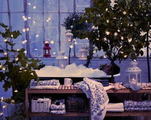 sur vos plantes. Black Bedroom Furniture Sets. Home Design Ideas