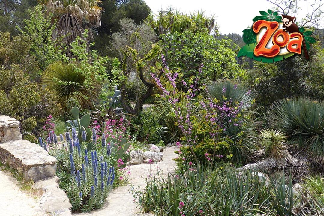 jardin-exotique-zoa-sanary-sur-mer