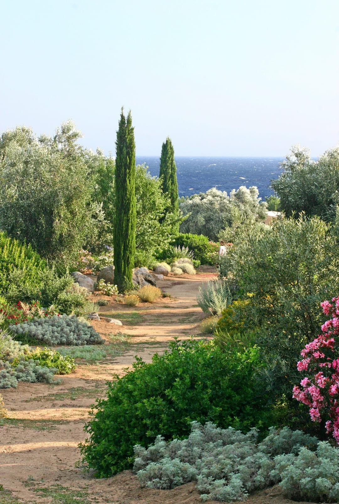 jardin-mediterraneen-saleccia-corse