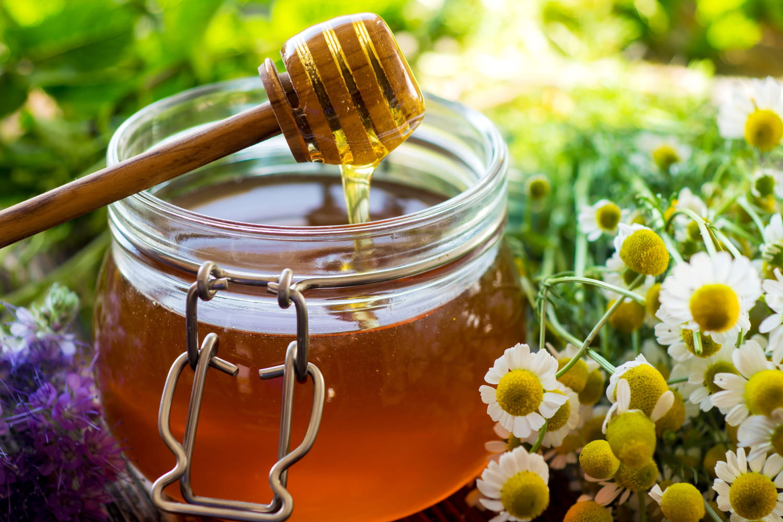 Antibiotique naturel: les meilleurs, ail, miel, plantes, utilisation