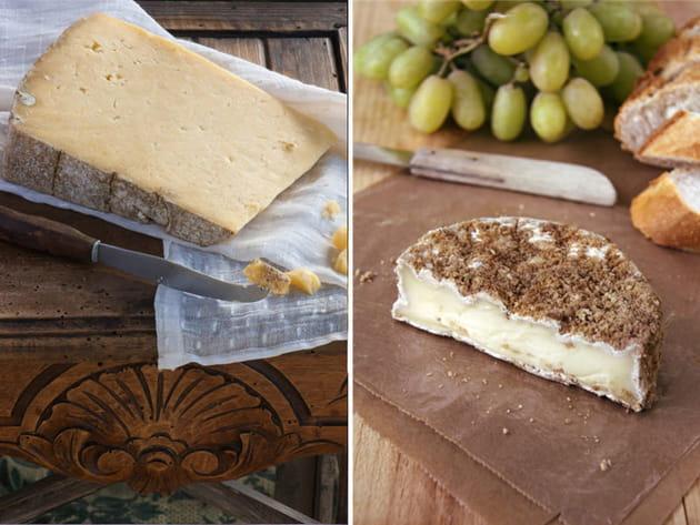 Camembert ou Comté ?