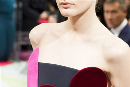 Schiaparelli (Close Up) - photo 7