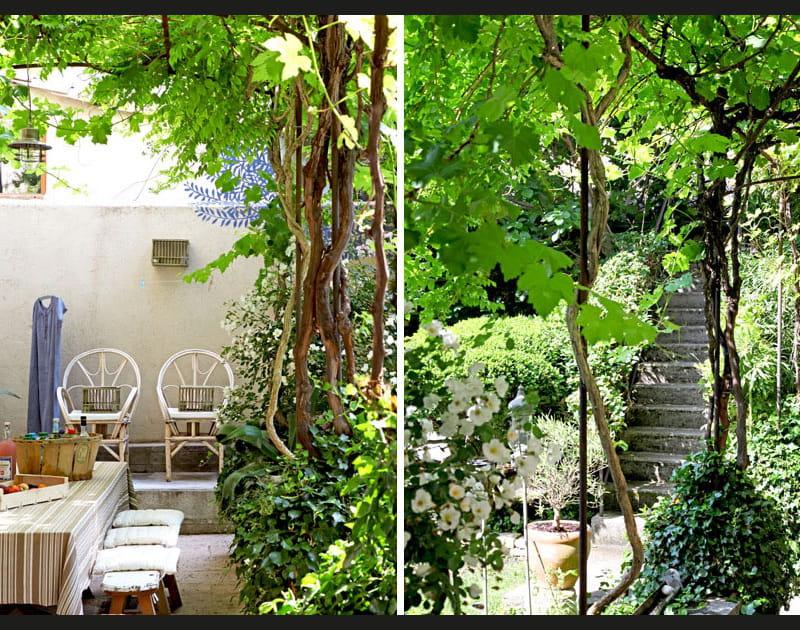 Un escalier dans la verdure