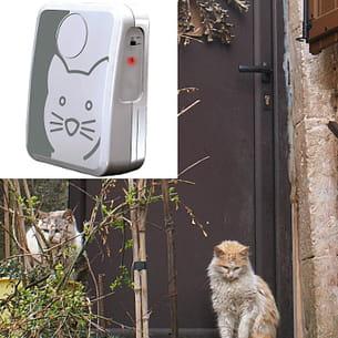 la sonnette pour chat kitty phone.