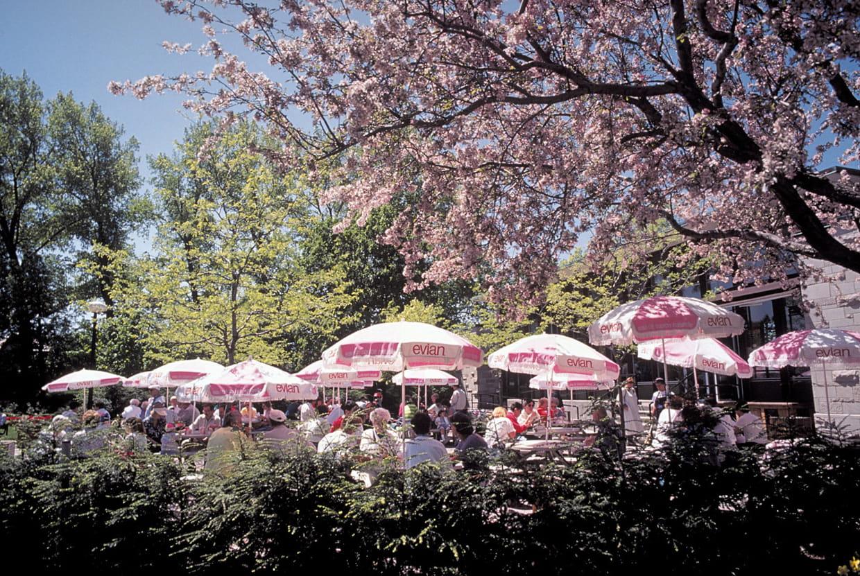 Le jardin botanique de montr al for Jardin botanique montreal tarif