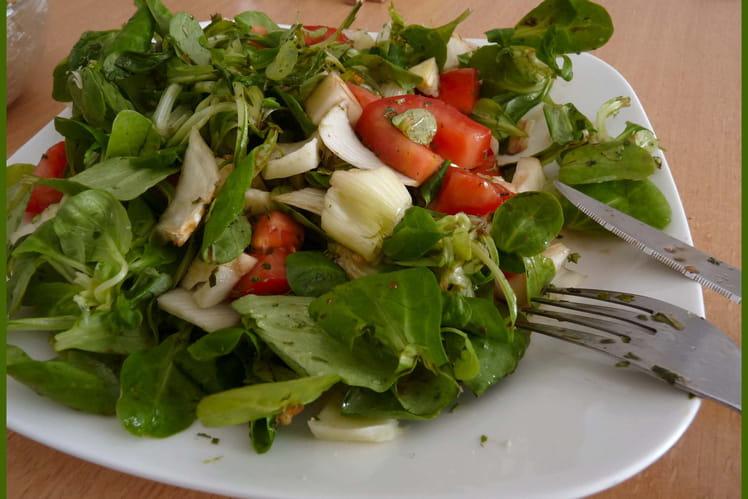 Salade de mâche au fenouil