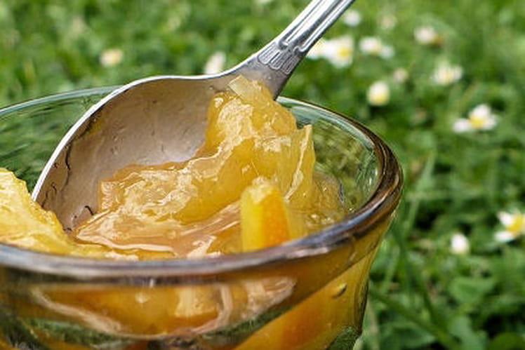 Confiture de rhubarbe aux oranges