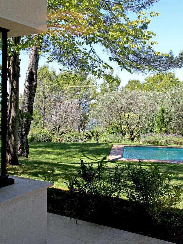 Une piscine d rob e dans un jardin for Piscine dans un jardin de 50m2