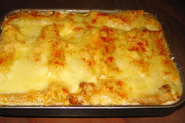 Cannelloni aux 3 fromages