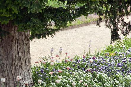 Jardins de Monet à Giverny : allée centrale