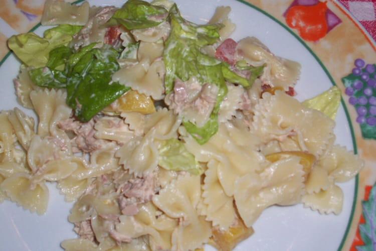 Salade de pâtes au thon et pêches à la mayonnaise