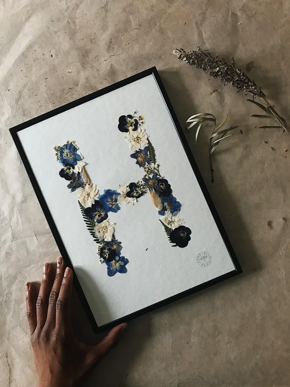 lettre-h-herbarium