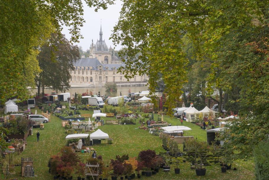 Partage et solidarité aux Journées des Plantes de Chantilly