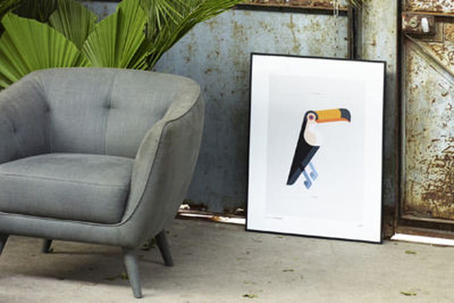 Josh Brill dessine des oiseaux pour Habitat
