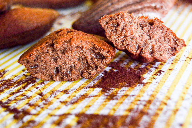 Madeleines vanille & cacao légères