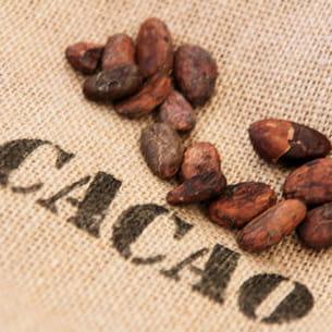 la taux de cacao d'un chocolat n'est pas un critère de qualité.