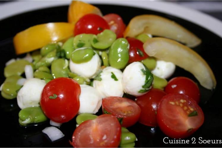 Salade de fèves, tomates cerise et mozzarella