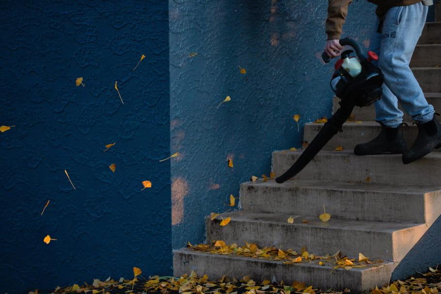 Meilleur aspirateur souffleur de feuilles: notre sélection pour trouver le bon