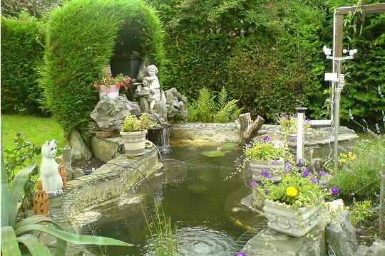 Un bassin en forme de poisson