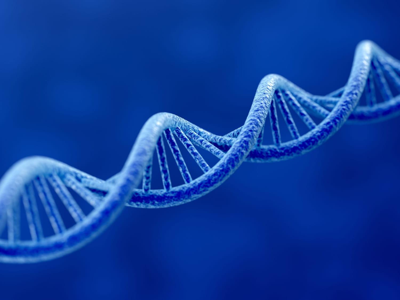 Maladies génétiques: liste, transmission, diagnostic