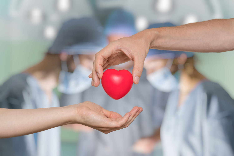 Don d'organes après la mort: comment ça se passe?