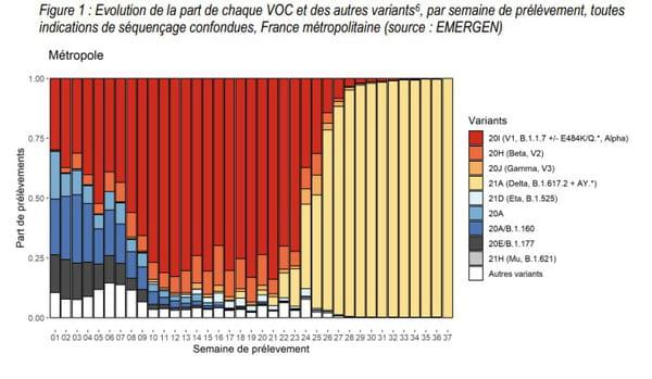 Evolution de la part de chaque VOC et des autres variants en France