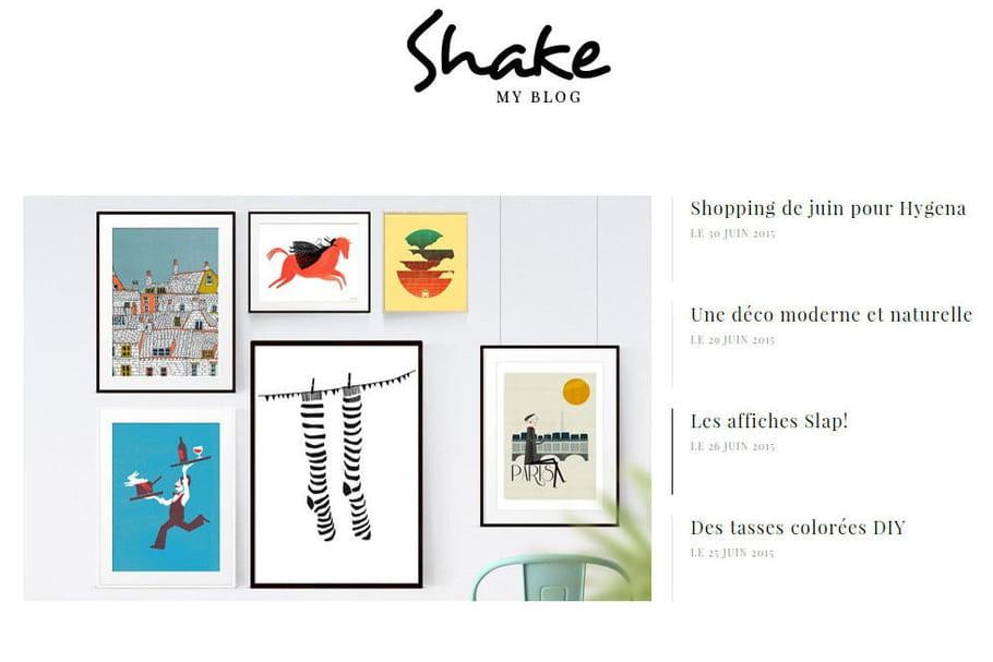 Le blog du moment : Shake my blog