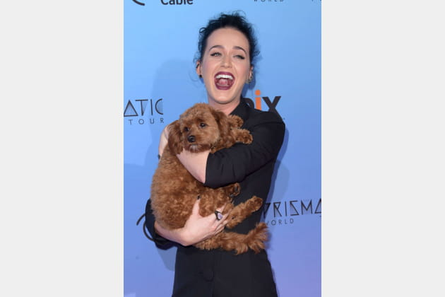 Katy Perry et Butters