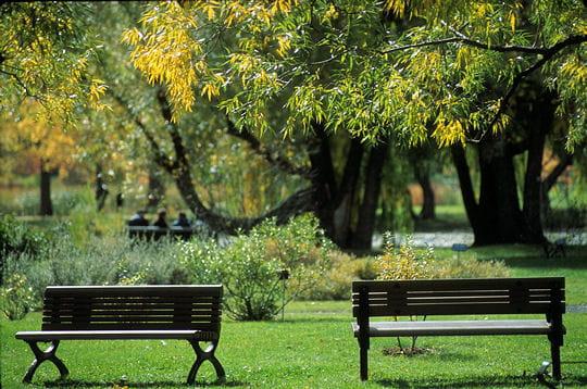 Les jardins du monde r unis en un seul lieu for Bingerville jardin botanique