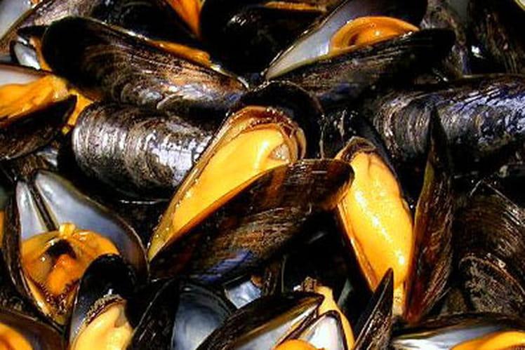 Moules fusion bretonne aux saveurs du levant