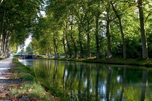 Flânerie le long du Canal du Midi