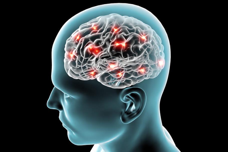 Nos cerveaux dans des frigos : les Biobanques appuient la recherche médicale