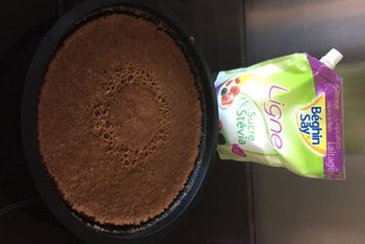 Gâteau au chocolat (micro-ondes)