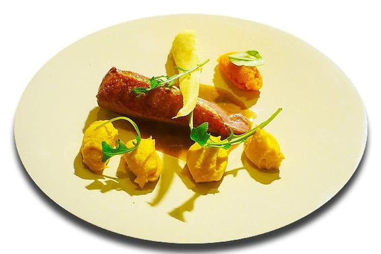 Magret de canard et son jus, purée de carottes, panais, velouté de courge