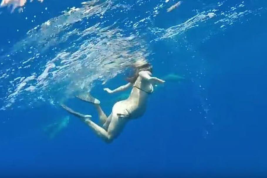 Vidéo : Accoucher au milieu des dauphins, la drôle d'idée d'une femme enceinte…