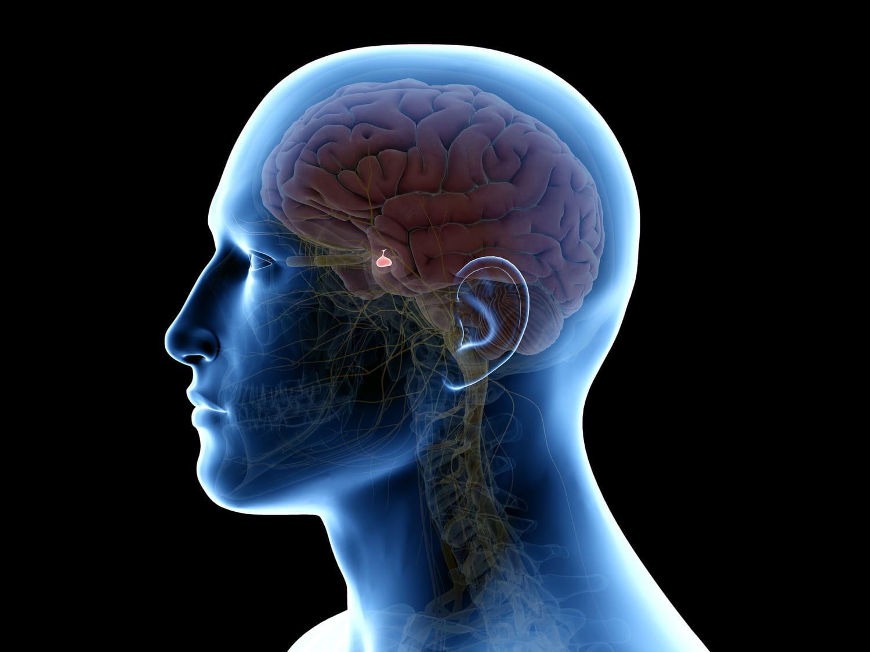 Cancer de l'hypophyse: symptômes, cause, traitement