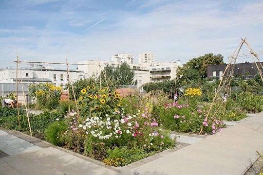 un jardin suspendu sur le toit d 39 un gymnase parisien. Black Bedroom Furniture Sets. Home Design Ideas
