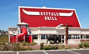 buffalo 300