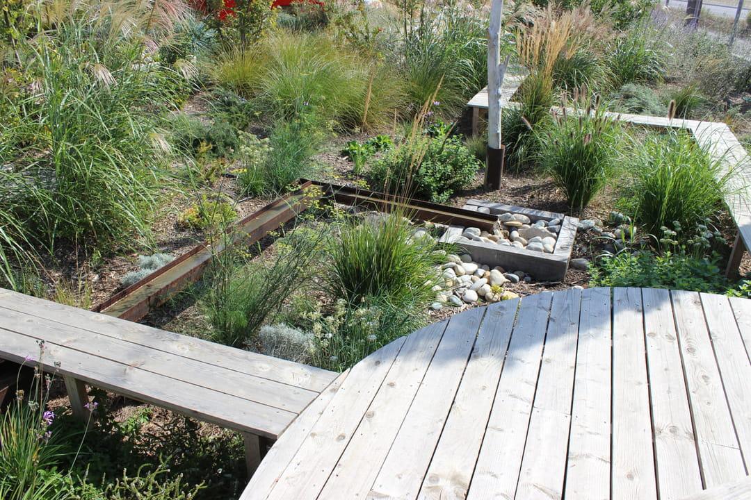 jardin-sauvage-poetique
