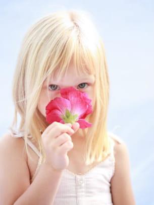 magnolia, la rêveuse