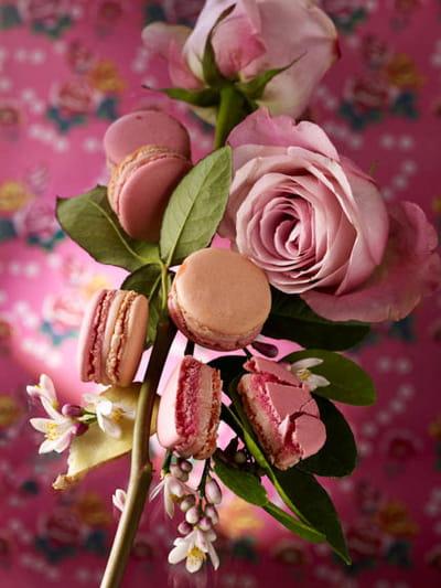 macaron jardin oriental