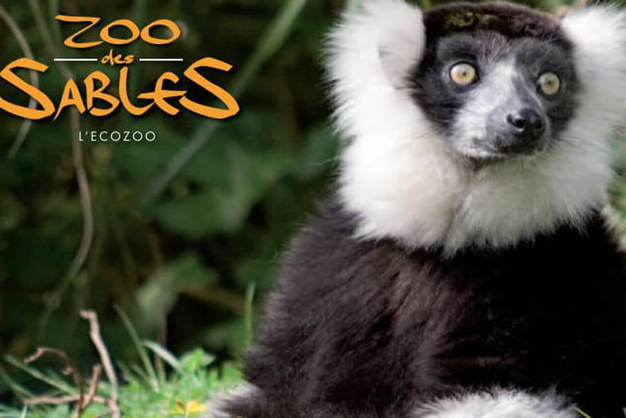 Parc Zoologique des Sables-d'Olonne: un éco-zoo!