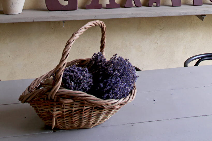 Comment éliminer les mauvaises odeurs dans la maison?