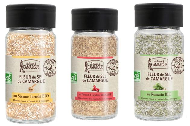 Les nouvelles fleurs de sel du Saunier de Camargue