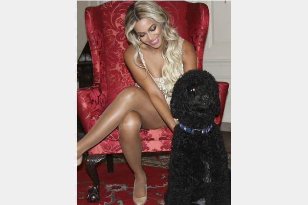 Beyoncé : l'amie de Sunny, le chien des Obama