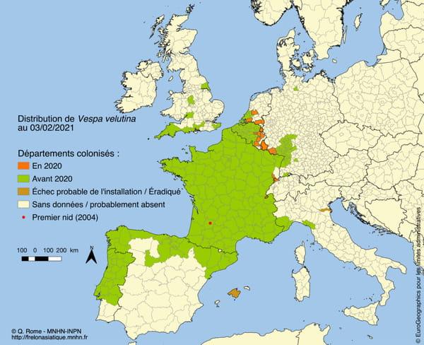 Carte 2021 de la présence du frelon asiatique en France