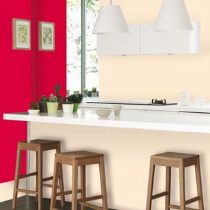 peinture cuisine & bains de dulux valentine