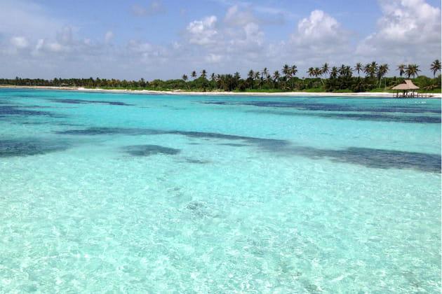Snorkeling dans les eaux cristallines caribéennes