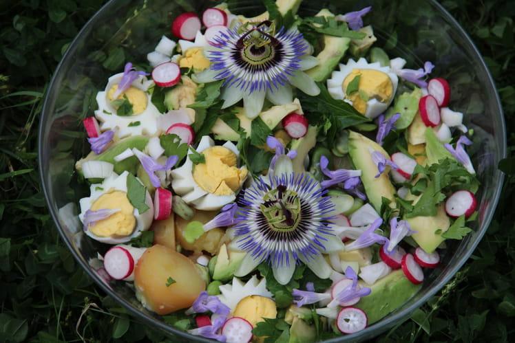 Salade de pommes de terre en jardin fleuri