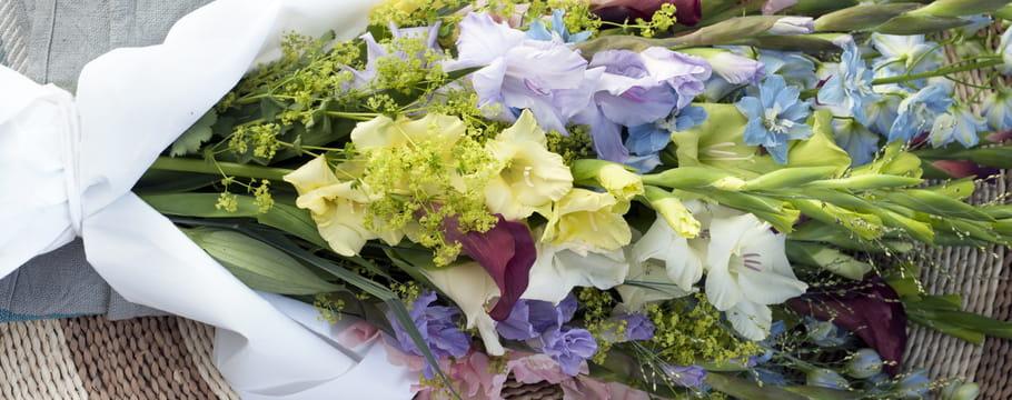 Coloriage Fleurs Bulbe.Tout Sur Les Plantes A Bulbes